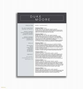 Aviation Cover Letter Template - Pilot Cover Letter Makeup Artist Resume Lovely Resume Cover Letter
