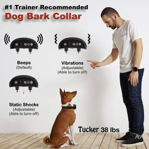Barking Dog Complaint Letter Template - Amazon Dog Bark Collar Barking Collar with Humane Static
