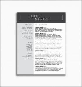 Basic Cover Letter Template - Samples Resume Cover Letters Inspirational New Example Cover