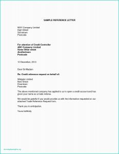 Business Recommendation Letter Template - Credit Reference Letter Example Letter Od Demand Bingo