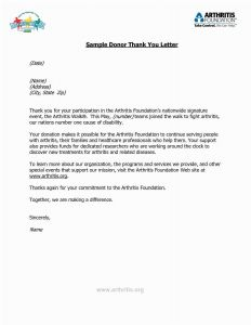 Charitable Contribution Letter Template - 43 Collection Charity Letter Template