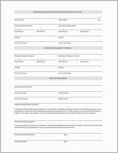 Child Custody Letter Template - 57 Fresh Gallery Child Custody Letter Template