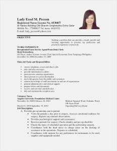 Clerical Cover Letter Template - 26 Day Care Responsibilities Resume Model