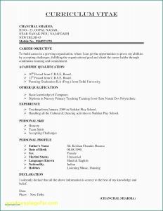 Commitment Letter Template - Cover Letter format for University Job Cabinet De Consultant Beau