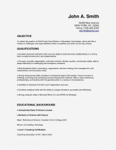 Confidentiality Letter Template - 19 New Non Disclosure Agreement Land Of Template