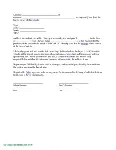 Consignment Letter Template - Consignment Letter Template Valid Sales Letter Vehicle Sales