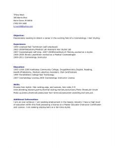 Cosmetologist Cover Letter Template - 49 Inspirational Information Technology Resume