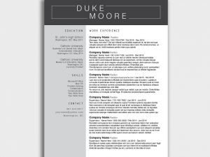 Cover Letter Template Docx - Resume Template Docx Best Free Minimalistic Cv Resume Templates