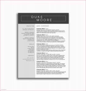 Cover Letter Template Tamu - 44 Tamu Resume Template Free Resume Template