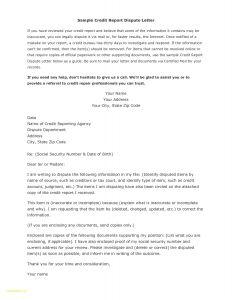 Credit Dispute Letter Template Pdf - Credit Dispute Letter Template Pdf Examples