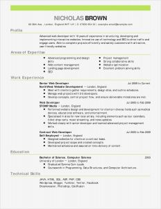 Disciplinary Letter Template - Letter Stencils for Painting Lovely Cfo Resume Template