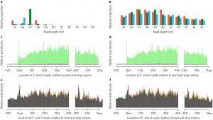 Dividing Fence Letter Template - Endogenous Mirna In the Green Alga Chlamydomonas Regulates Gene