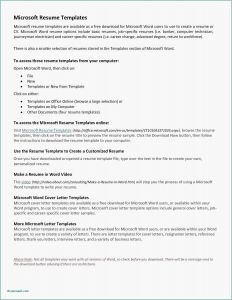 Employment Letter Of Recommendation Template - 28 New Reference Letter Professional