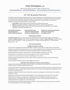 Employment Verification Letter Template Microsoft - Employment Verification Letter Template Word Examples