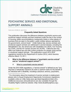 Esa Letter Template - Emotional Support Animal Letter for Flying Example Emotional Support