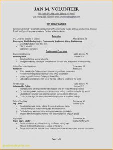 Fundraising Template Letter - Fundraising Letter Template 2018 Fundraising Resume New Help with A