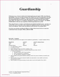 Guardianship Letter Template - How Many Spaces In A Letter format Sample Guardianship Letter Best