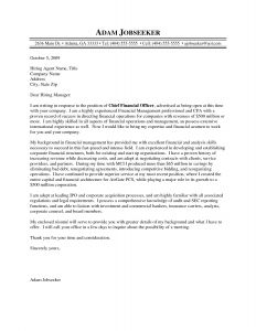 Hiring Letter Template - Hiring Letter Template Reference Cfo Resume Template Inspirational