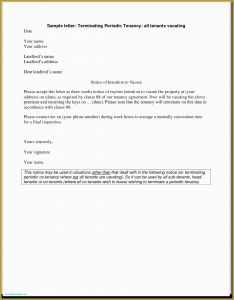 Inspection Letter Template - Samples Letter Heads Law Student Resume Template Best Resume