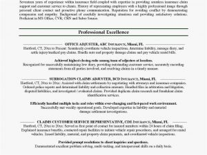 Investigation Letter Template - Insurance Agents 2018 Insurance Sales Resume New Cto Resume 0d