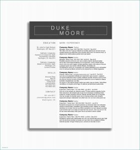 Investment Banking Cover Letter Template - Sample Resume Cover Letter Property Management Property Management