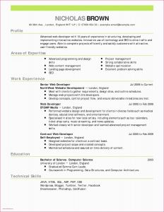 Invoice Letter Template - Example A Letter Head Cfo Resume Template Inspirational Actor