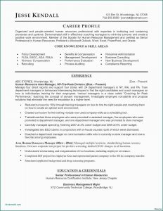 Irs Response Letter Template - Cover Letter format for Hr Job Irs Letter Template Download Sample