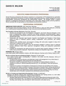 Land Offer Letter Template - Fer Letter format In Usa Resume Word Doc Template Employment Fer