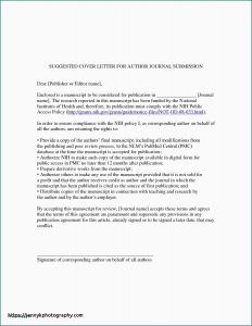 Legal Covering Letter Template - 31 Best Sample Law Cover Letters