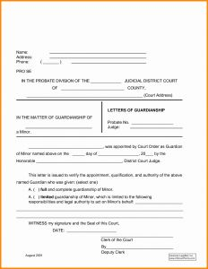 Legal Guardianship Letter Template - Legal Guardianship Letter Template Samples