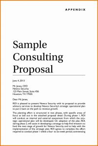 Letter Of Engagement Template Consultant - Letter Engagement Template Consultant Examples