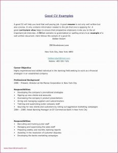 Letter Of Financial Responsibility Template - What is In A Cover Letter for A Resume Fresh Job Hiring Letter