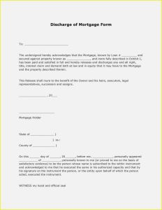 Letter Of Indemnity Template - 40 Fresh form Letter Template