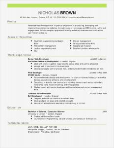 Letter Of Intent to Hire Template - Maintenance Cover Letter Template Sample