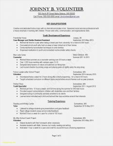 Letter Of ordination Template - 20 Curriculum Development Template Simple