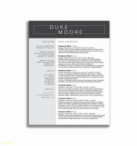 Letter Of Reference Template Word - Personal Reference Letter Template Word 2018 37 Beautiful Resume