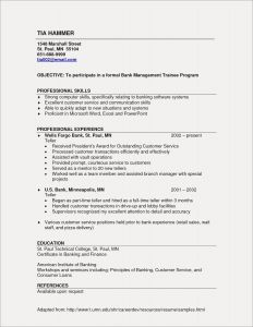 Letter Of References Template - Professional Reference List Template Customer Service Resume Sample