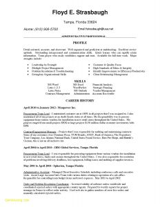 Letter Of References Template - Sample Administrative assistant Resume Reference Admin Resume