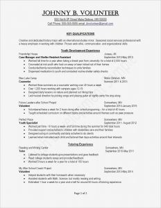 Letter Of Support Template - Template for A Resume Inspirationa Cfo Resume Template Inspirational