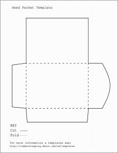Letter Size Envelope Template - 60 astonishing Graph 9 Business Reply Envelope Template