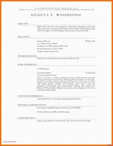 Letter Template for Router - Dokumentation Word Vorlage 26 Best Professional Letter Template Word
