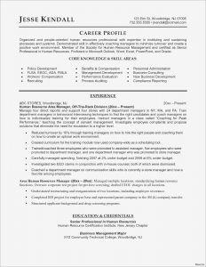 Microsoft Word Professional Letter Template - Severance Letter Template Sample