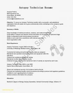 Ms Word Resume Cover Letter Template - Microsoft Word Resume Cover Letter Template Collection