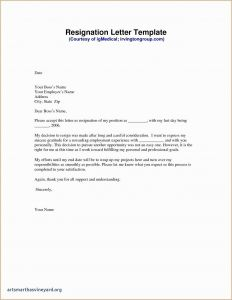 Nsf Letter Of Support Template - 43 Collection Charity Letter Template
