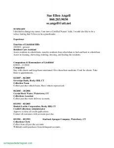 Nurses Cover Letter Template - 50 New Rn Sample Resume