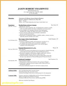 Online Cover Letter Template - 49 Awesome Resume Line Template