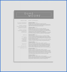 Open Office Business Letter Template - 20 Inspirant Cv Pour Open Fice S Lucybug