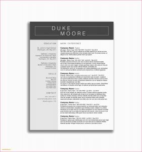 Open Office Template Letter - Open Fice Cover Letter Template 44 Luxury Resume Templates for