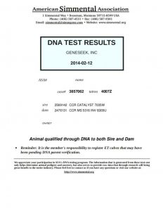Paternity Test Results Letter Template - Paternity Test Results Letter Example