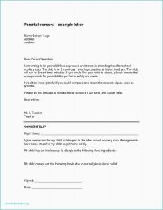 Permission to Travel Letter Template - 21 Consent form Template